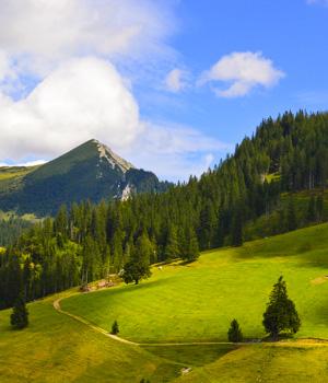 Ferienwohnung in Tirol