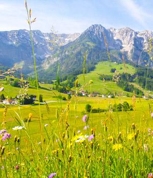 Urlaub in der Ferienwohnung in Tirol genießen