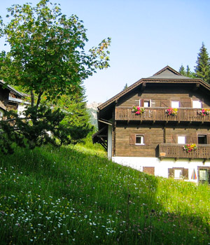 Urlaub in der Ferienwohnung in Kärnten