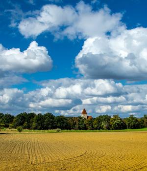 Ferienwohnung im Burgenland