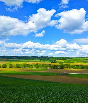 Natur erleben im Kurzurlaub im Burgenland