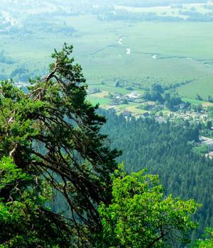 Wandererlebnisse in Flachau genießen