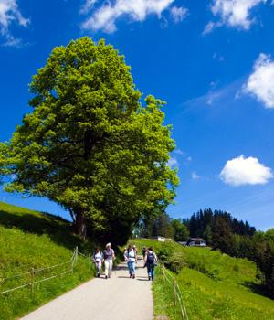 Wanderurlaub im Bregenzerwald