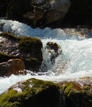 Natur genießen im Wanderurlaub im Wallis