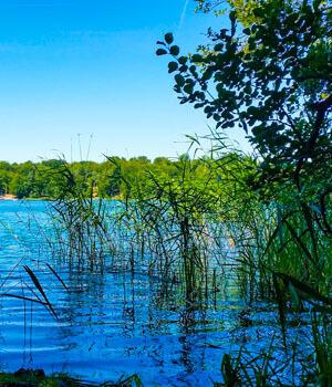 Natur genießen im Wanderurlaub in Brandenburg