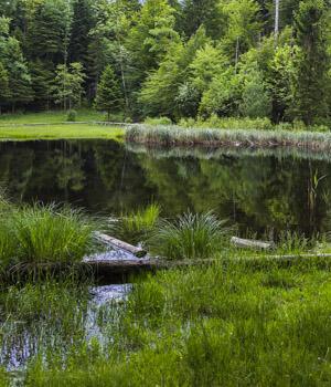 Natur genießen im Wanderurlaub in der Rhön