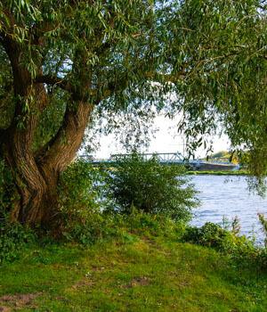 Natur genießen im Wanderurlaub im Ruhrgebiet