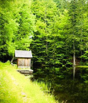 Natururlaub im Bayerischen Wald
