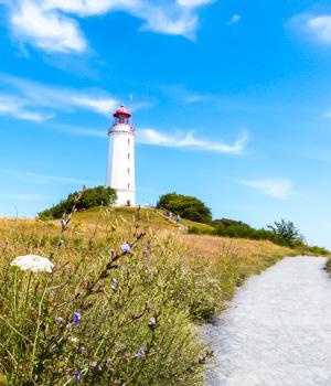 Ferienwohnung auf Hiddensee