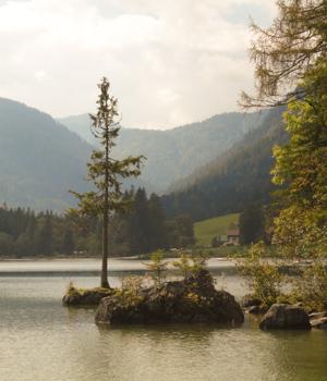 Freizeiturlaub im Bayerischen Wald