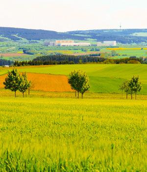 Ferien in Rheinland-Pfalz
