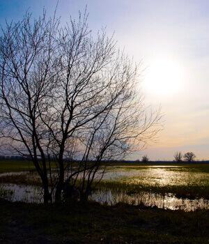Natur erleben im Urlaub im Havelland