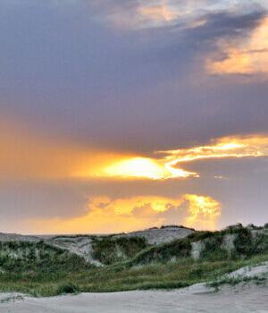 Natur erleben im Urlaub in Nordfriesland