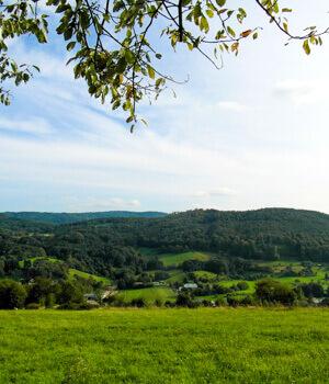 Natur erleben im Odenwald
