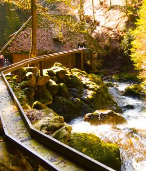 Pension im Schwarzwald