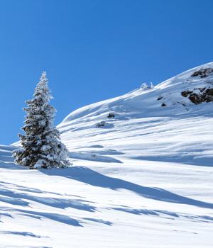 Skiparadies in Montafon