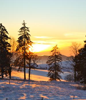 Winterurlaub im Schwarzwald