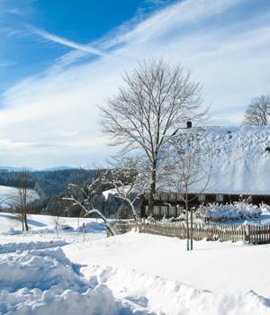 Schneeparadies im Schwarzwald