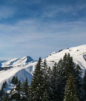 Skiurlaub in Fieberbrunn