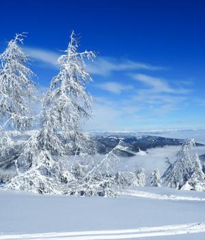 Ferienspaß im Skiurlaub in der Steiermark