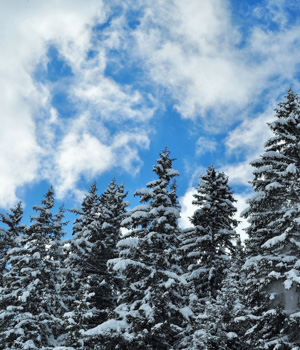 Natur genießen im Skiurlaub in Berwang