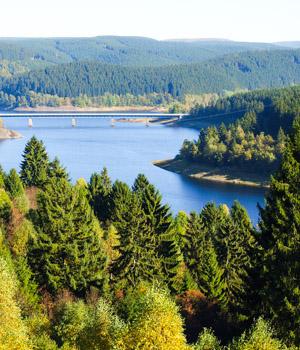 Wanderurlaub in den Wäldern in Niedersachsen