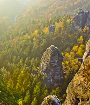 Wandererlebnisse in der Sächsischen Schweiz genießen